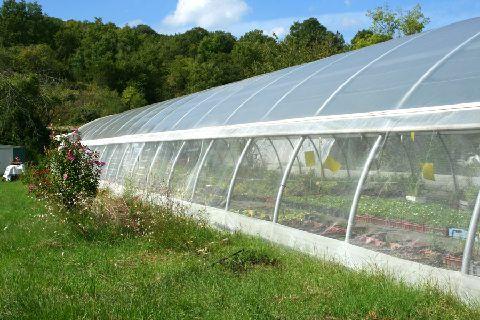 Nos Serres La Ferme Bioling - ferme biodynamique permaculture