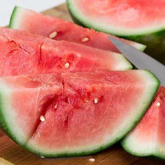 Plants de melons pastèques variétés anciennes bio Demeter Bioling 1