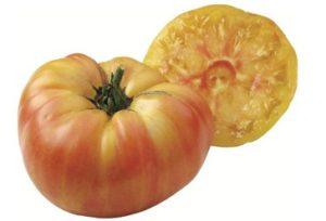 Ananas tomates anciennes pépinière de variétés anciennes bio plants Demeter Bioling2