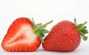 envies de fraises remontants heritage 4 plants pépinière de variétés anciennes bio plants Demeter Bioling2