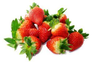 mara des bois favette charlotte envie de fraises variétés remontants heritage 4 plants pépinière de variétés anciennes bio plants Demeter Bioling2