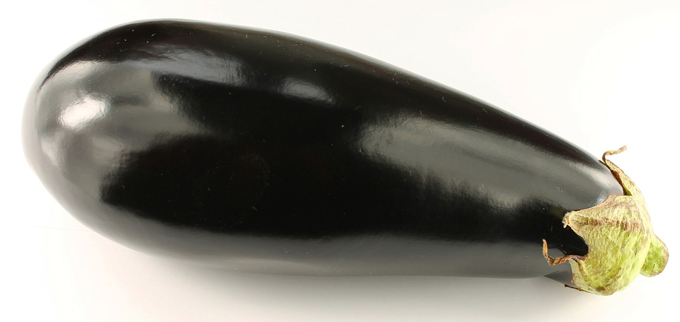 aubergine violette longue - légumes verts tomates anciennes pépinière de variétés anciennes bio plants Demeter Bioling