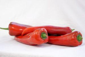 poivron doux d'espagne tomates anciennes pépinière de variétés anciennes bio plants Demeter Bioling
